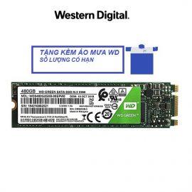 [Mã ELWDSD giảm 8% tối đa 300K] Ổ cứng SSD Western Digital Green M.2 2280 Sata 480GB WDS480G2G0B